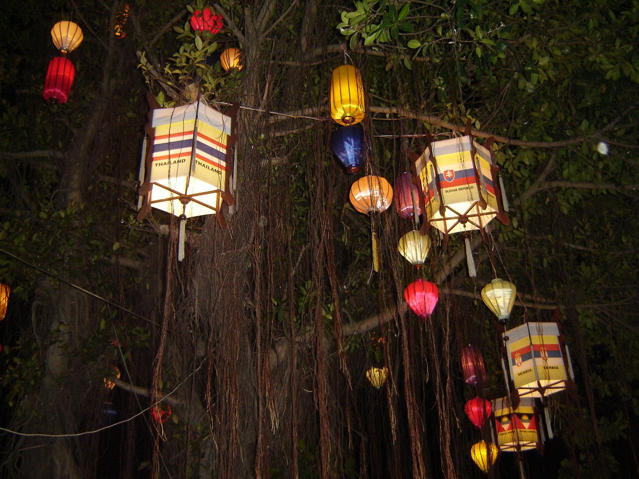 lanternesdansarbre